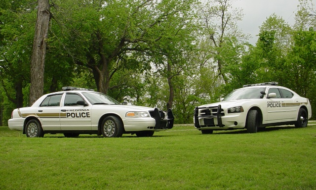 Two patrol cars